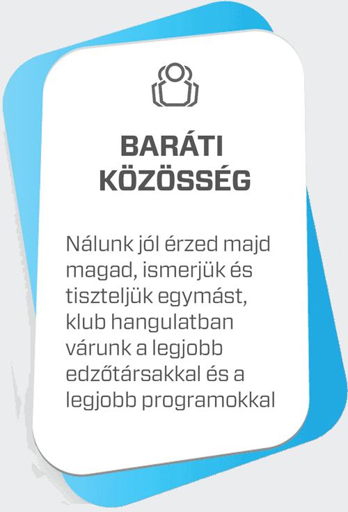 profi_edzesek